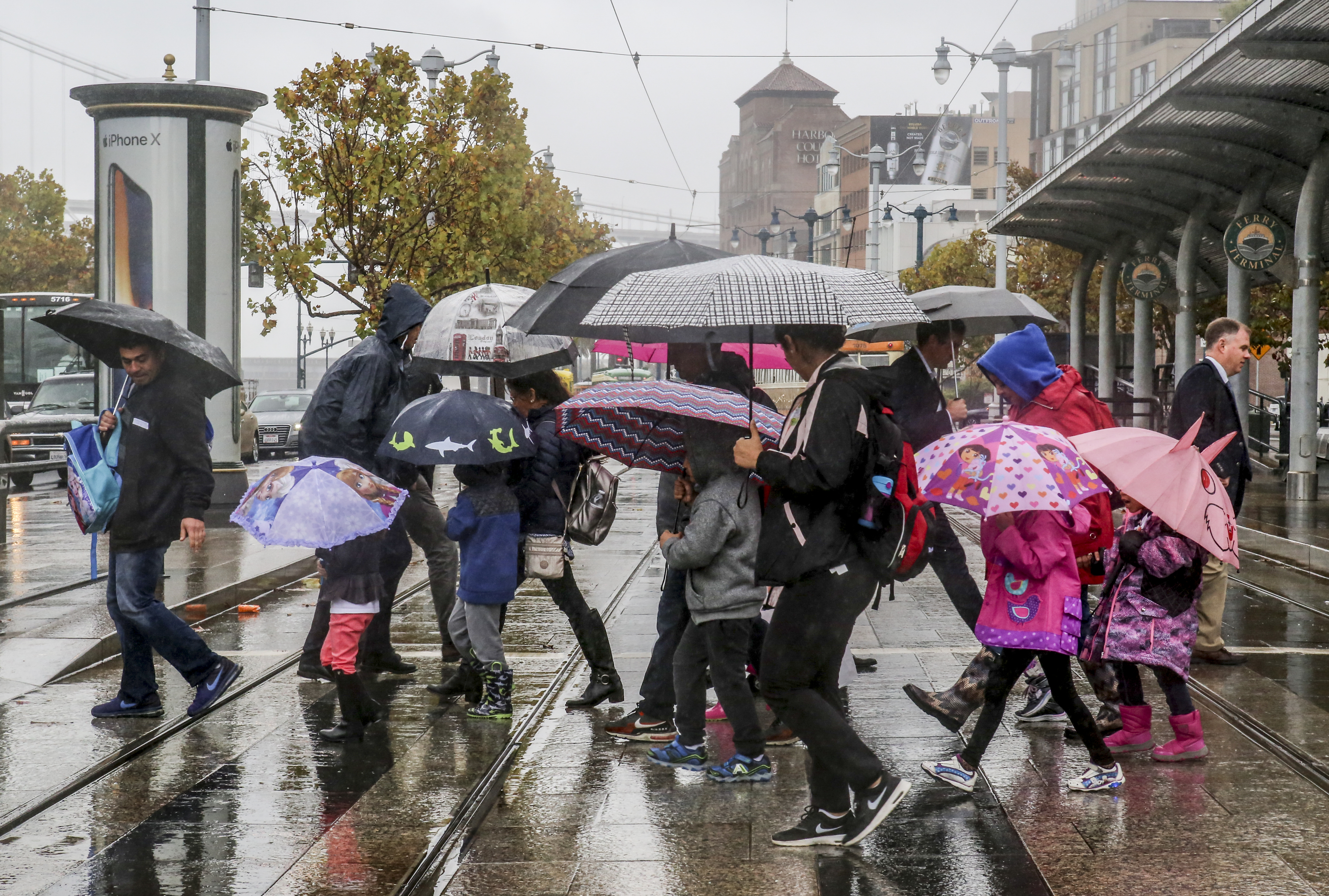 A swarm of umbrellas can be seen held by people crossing the street in front of the Ferry Building on Thursday, November 16th, 2017. (Mira Laing/Special to S.F. Examiner)