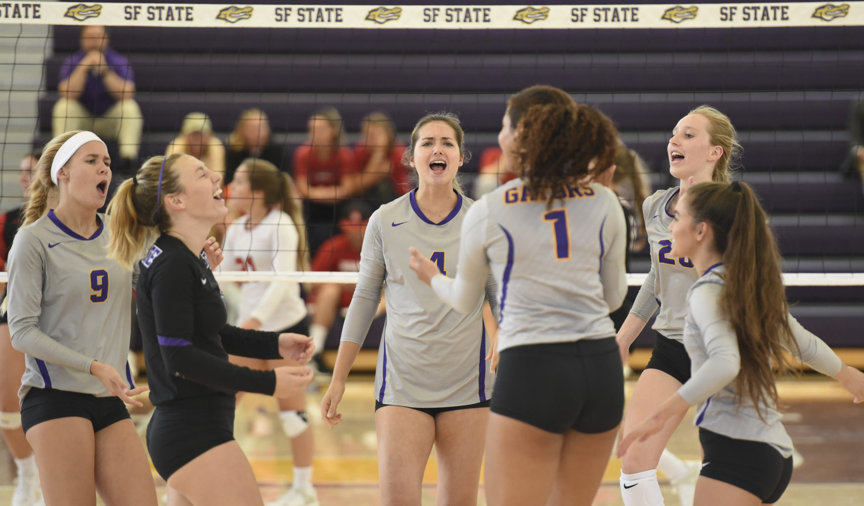Drew Morris (1), Lauren Williams (4), Jessica Haynie (9) and Payton Jensen (20) celebrate with their teammates at the D2 West Region Showcase. (Cody Glen / SF State)
