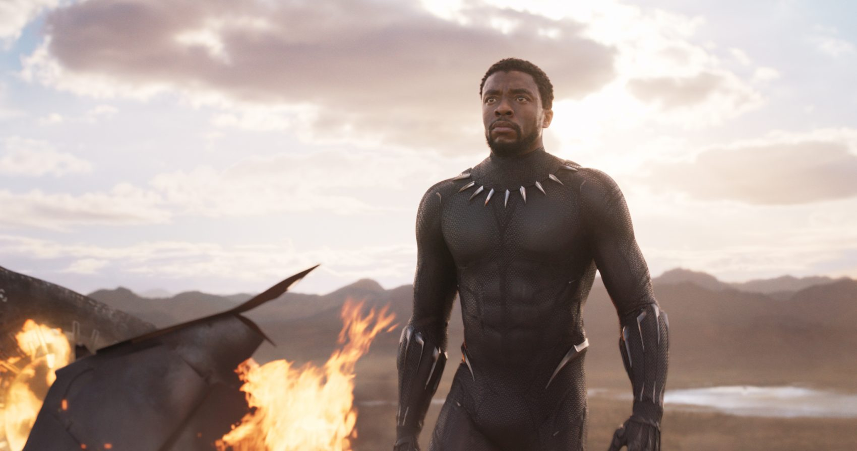 Black Panther was 2018's biggest money maker, and a critical favorite, too. (Courtesy Marvel)
