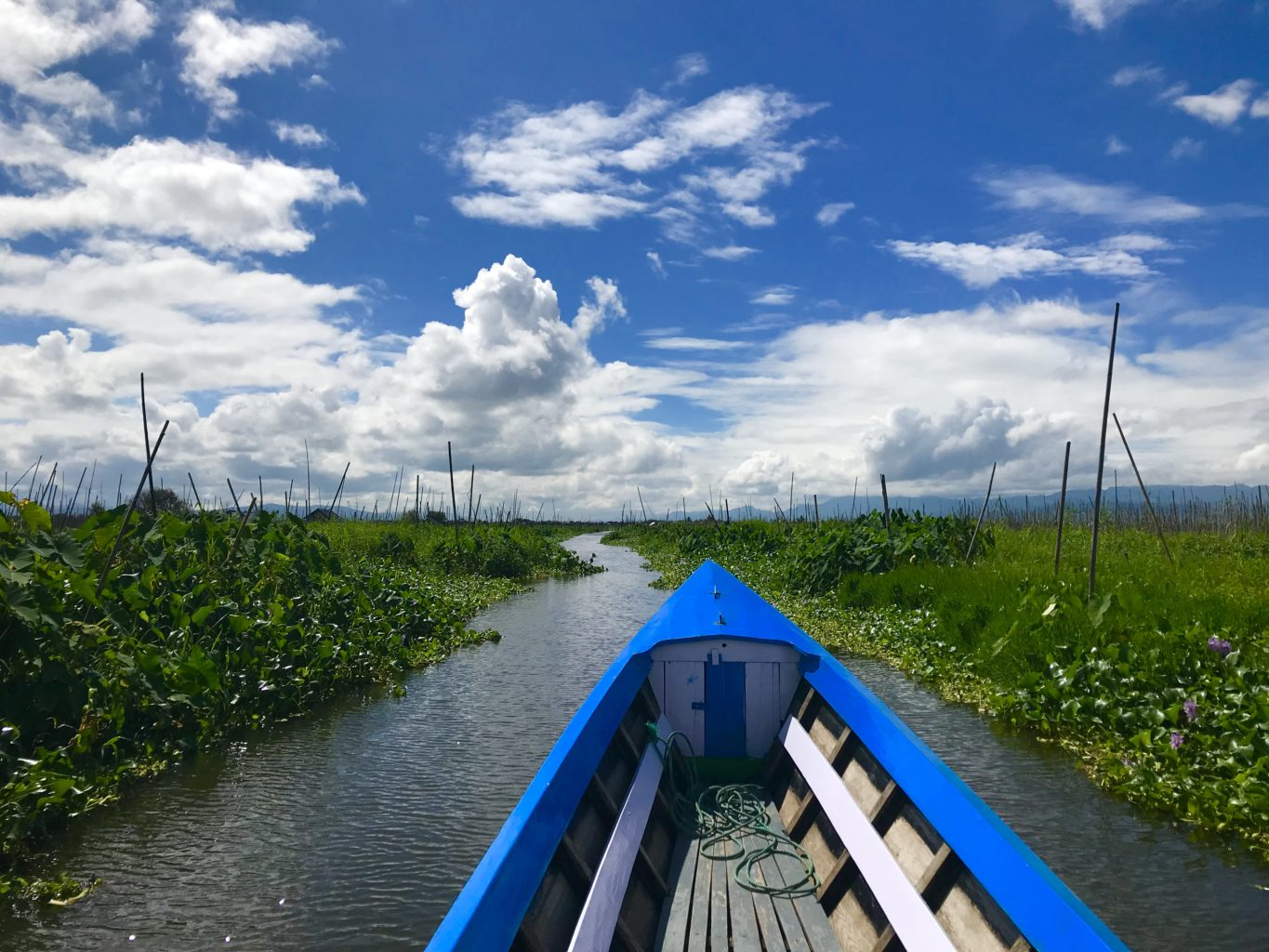 My expert longboat captain glides me through the marshes of Inle Lake. (Julie L. Kessler/Special to S.F. Examiner)