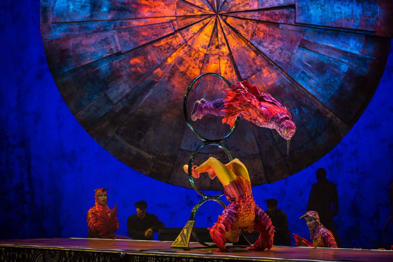 """Hoop divers Devin and Marta Henderson, brother and sister from San Francisco, are in the cast of """"Luzia."""" (Courtesy Matt Beard)"""