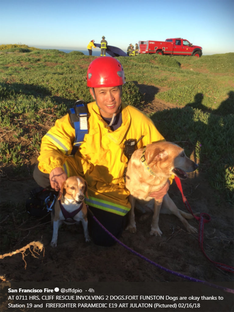 San Francisco fire fighters rescued two dogs at Fort Funston Thursday morning. (Courtesy @sffdpio)