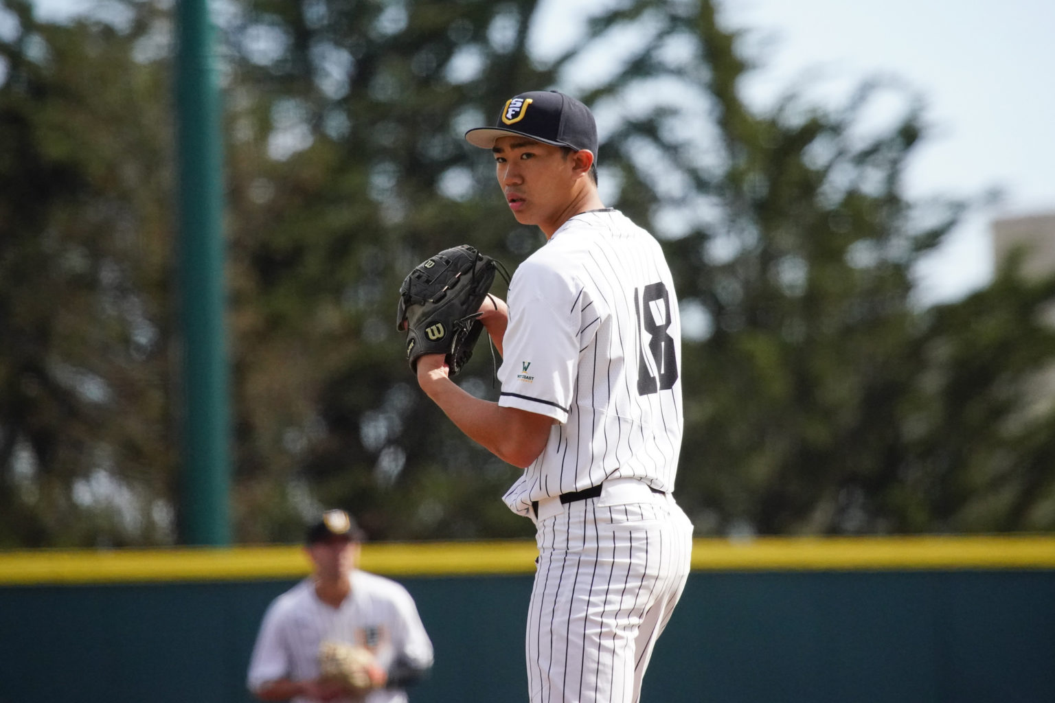 Riley Ornido pitches at Dante Benedetti Diamond early this season. (Courtesy / USF Dons Baseball)