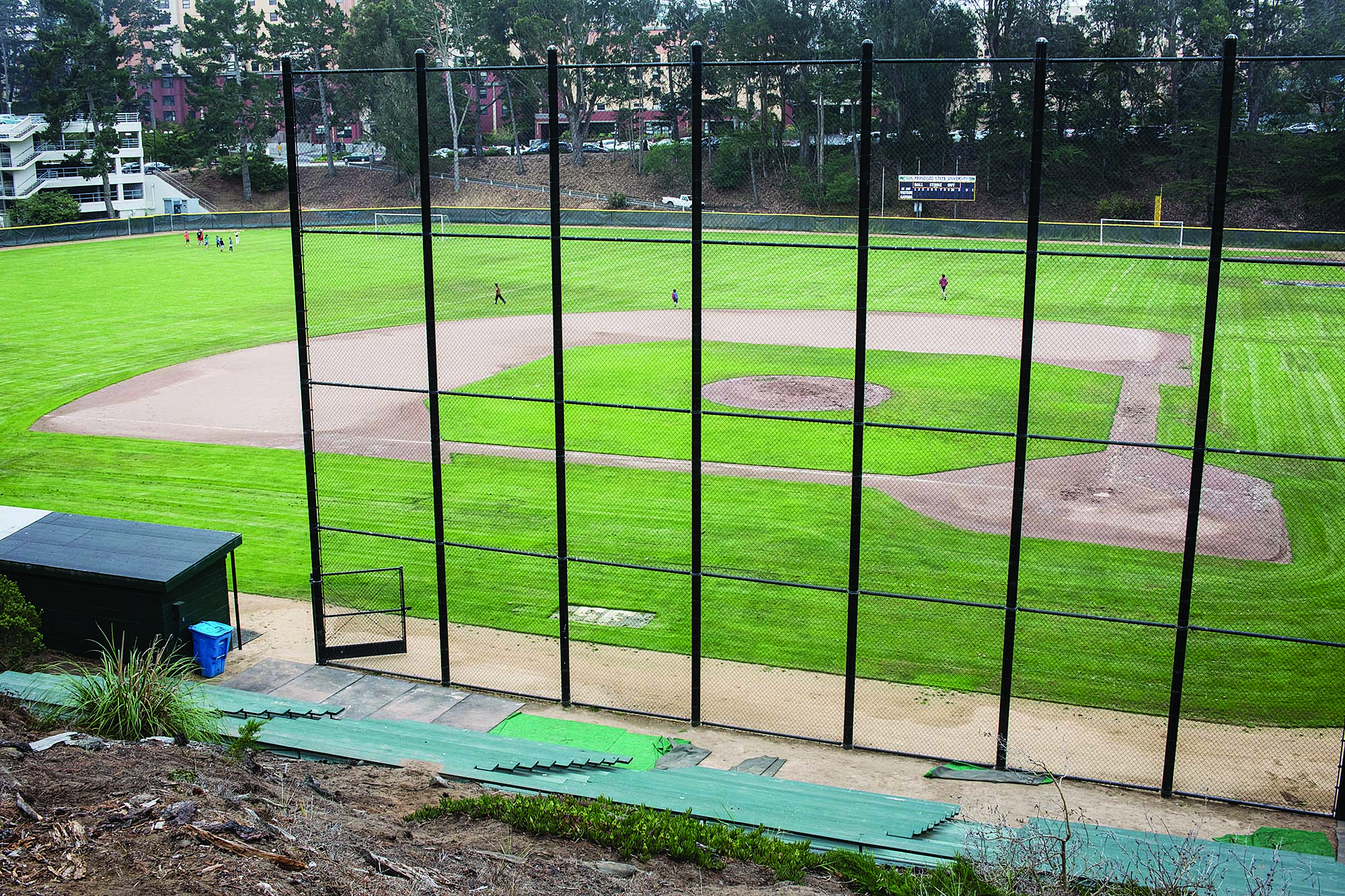 Maloney Field at San Francisco State University on Thursday, June 11, 2015 (Special to S.F. Examiner/Michael Ares)