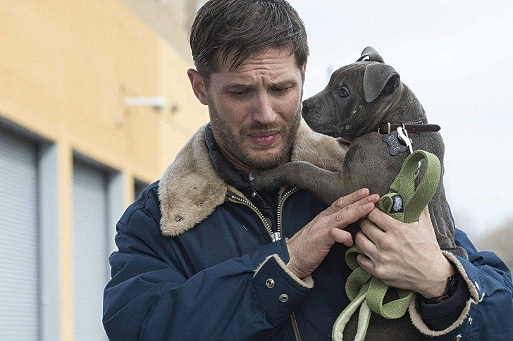 "COURTESY FOX SEARCHLIGHTTom Hardy is excellent as a bartender in working-class Brooklyn in ""The Drop."""
