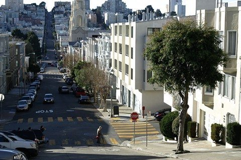 Mike Koozmin/The S.F. ExaminerA cash-strapped city foisted responsibility for the care of thousands of trees on property owners