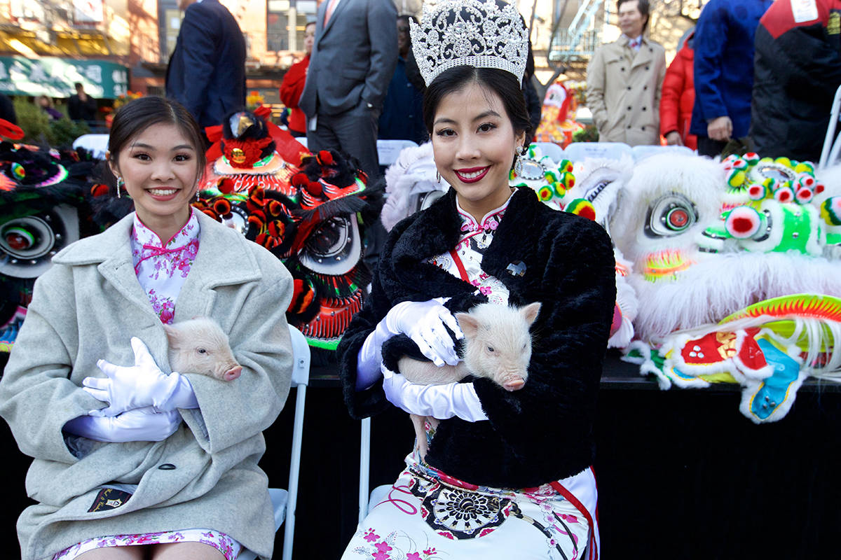 Left: Miss Chinatown USA Jasmine Lee, right, and contestant Flora Hui hold baby pigs at the Year of the Pig kickoff ceremony in February 2019. (Kevin N. Hume/S.F. Examiner)