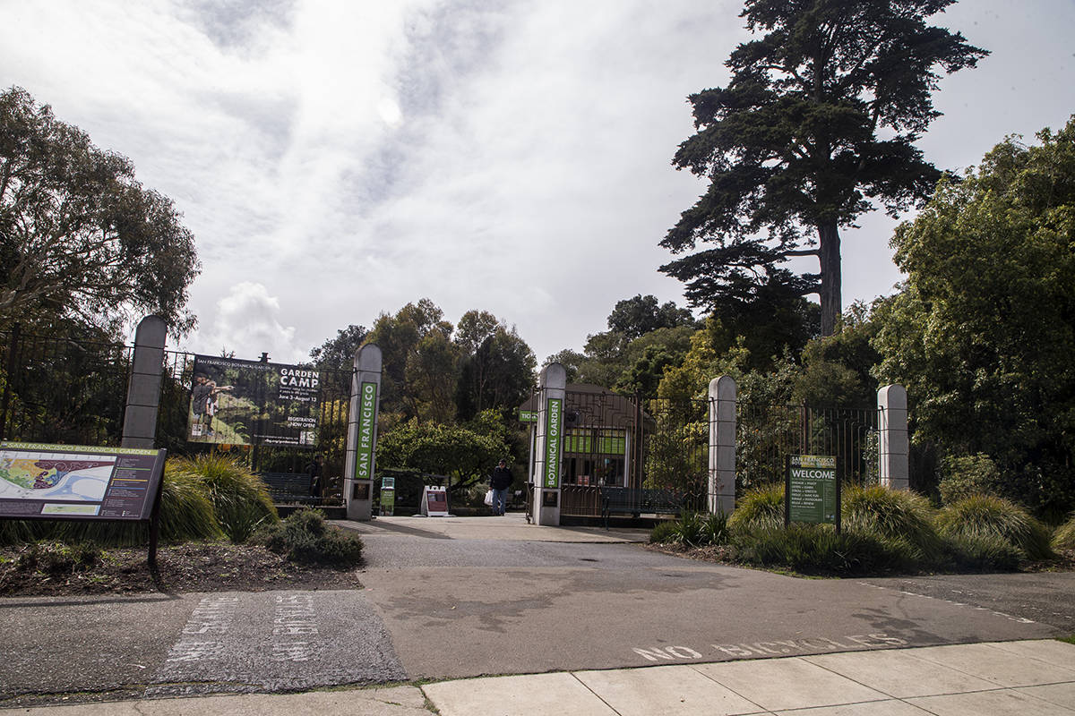The San Francisco Botanical Garden in Golden Gate Park remains open on Sunday, March 15, 2020. (Chris Victorio | Special to S.F. Examiner)