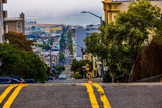 Advocates say San Francisco agencies need to increase tree planting in The City as well as ensure that trees aren't unnecessarily removed. Courtesy photo)