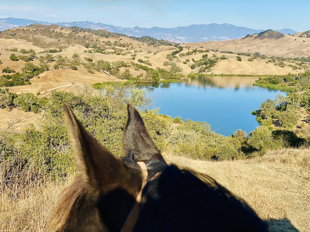 One horseback ride offered a nice view of Lake Alisal. (Julie L. Kessler/Special to S.F. Examiner)