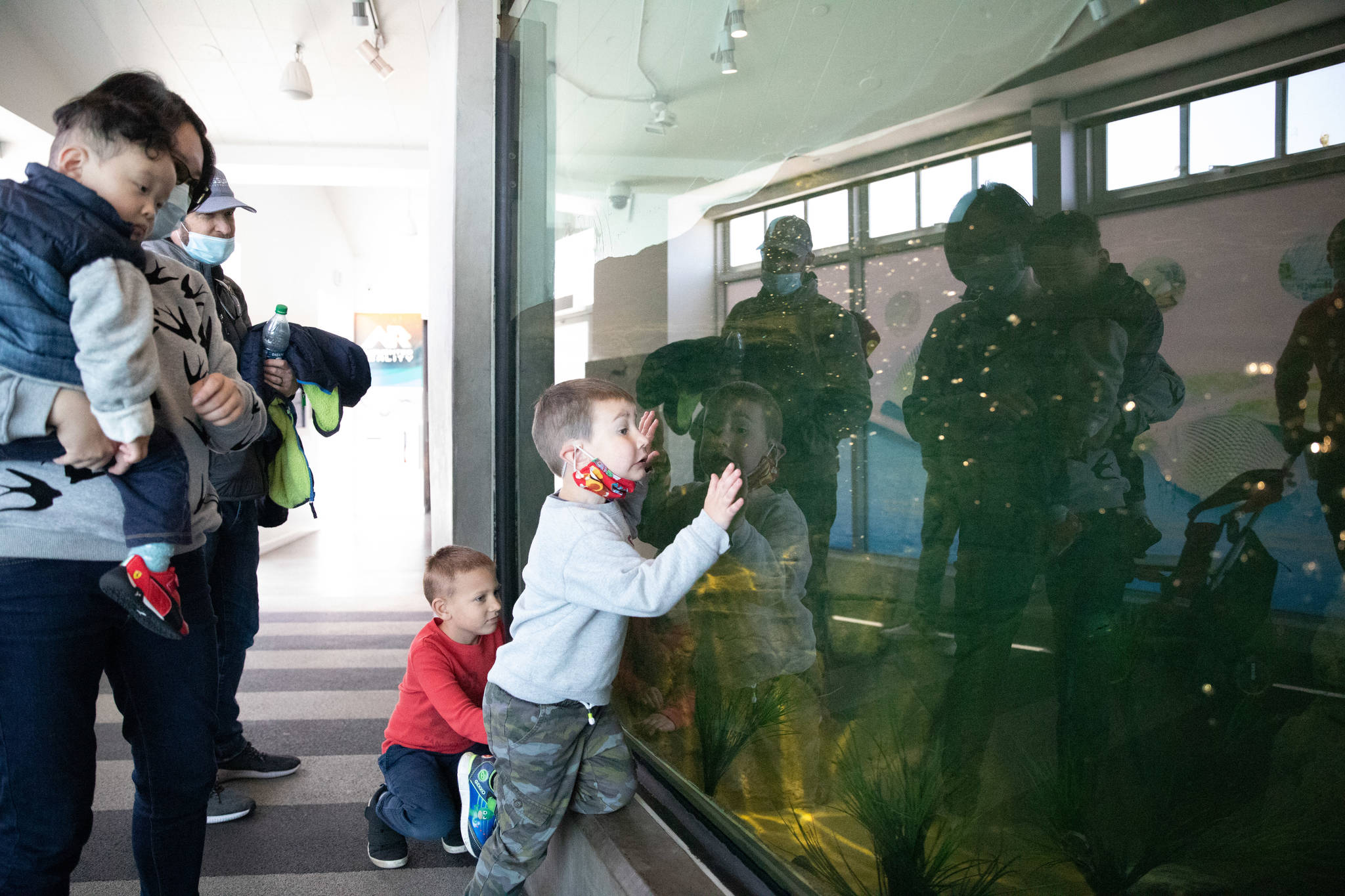 Young guests at Aquarium of the Bay wait for an otter to swim by. (Sebastian Miño-Bucheli/Special to S.F. Examiner)