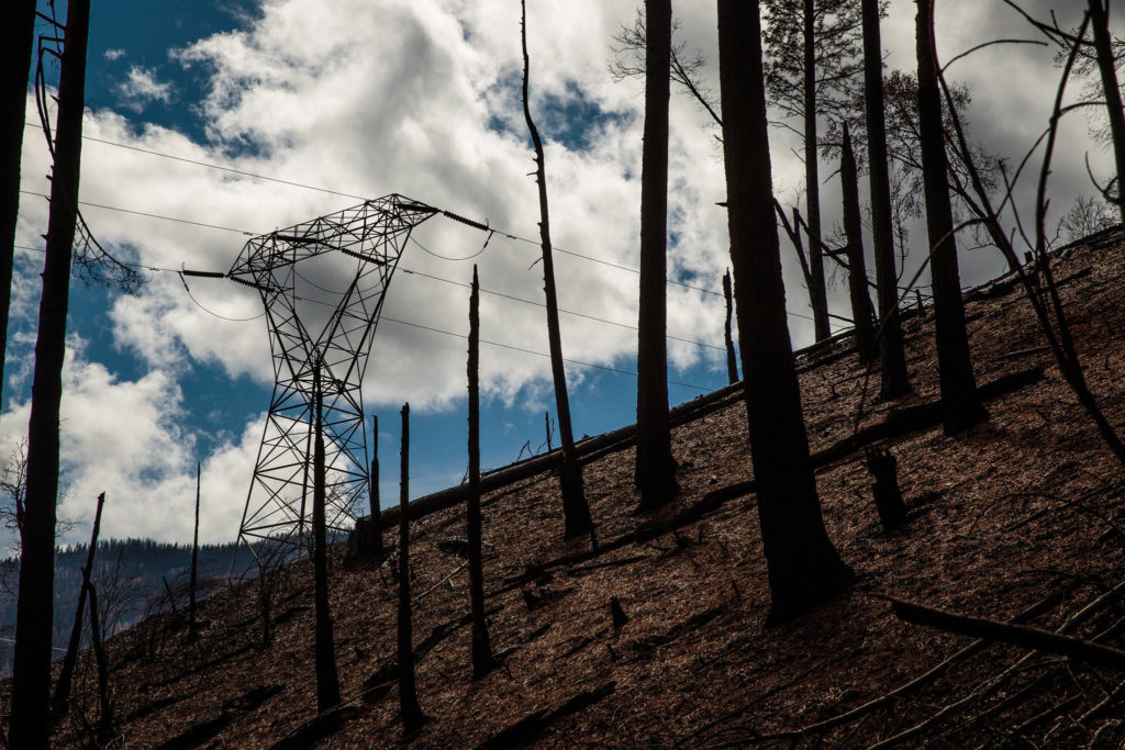 The Pacific Gas & Electric Caribou-Palermo transmission line runs through an area that was devastated by the Camp Fire in November 2018 in Pulga, Feb. 28, 2019. The California utility says a blown fuse on power lines could have sparked the Dixie Fire, which has burned over 30,000 acres near the site of the Camp Fire two years ago. (Max Whittaker/The New York Times)