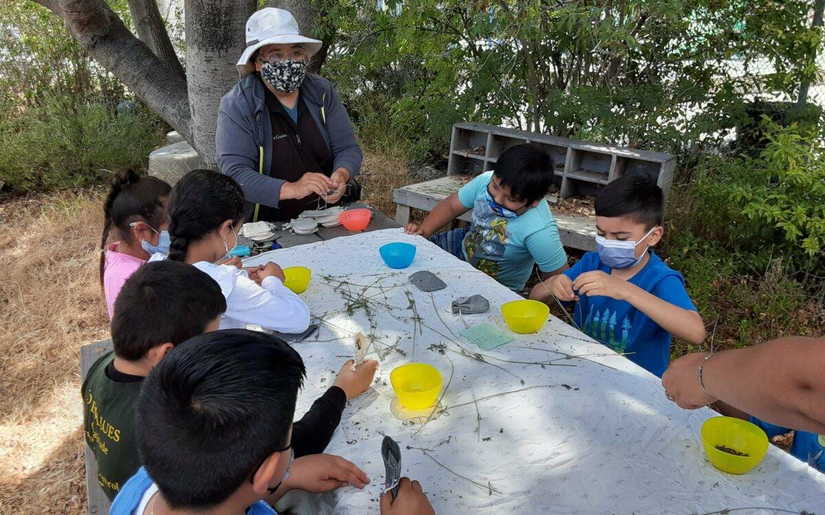 Students practice identifying species in the school garden at Verde Elementary in Richmond during summer camp. (Photo courtesy of Verde Elementary)